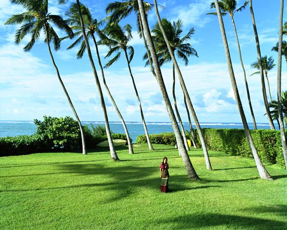 BAILA Hawaii 2-1